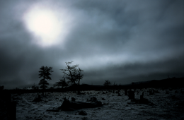 numero60_ The lost cemetery of images 01