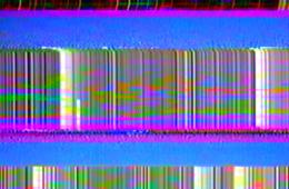 hugo-olim-image-feature-001